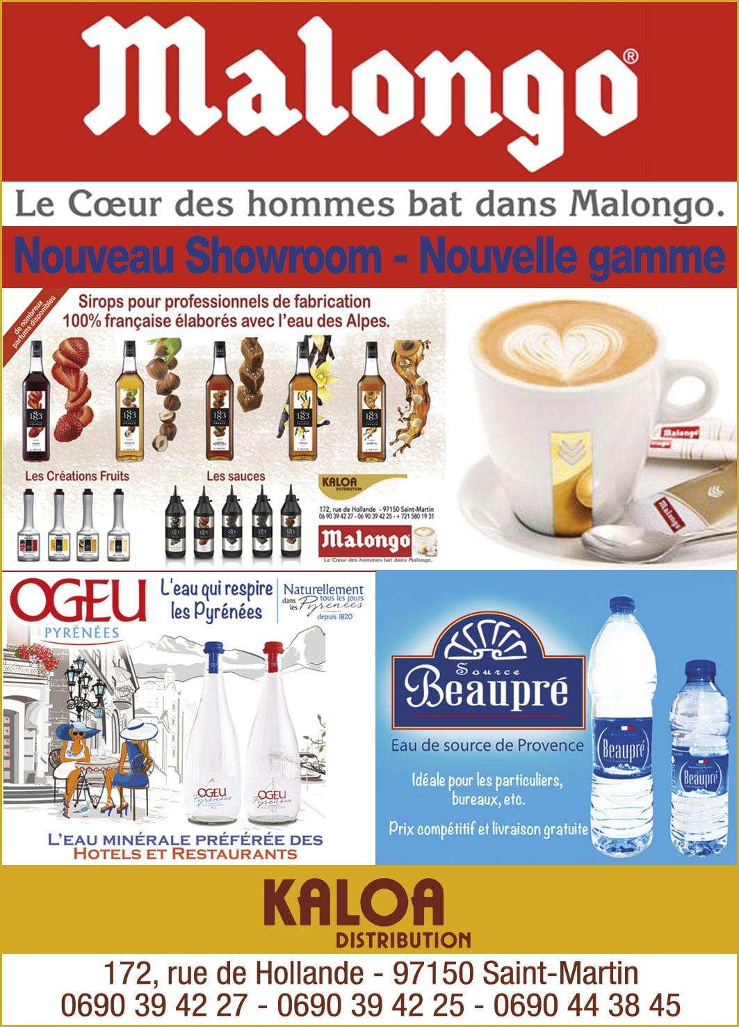Annuaire Téléphonique St Martin - Malongo